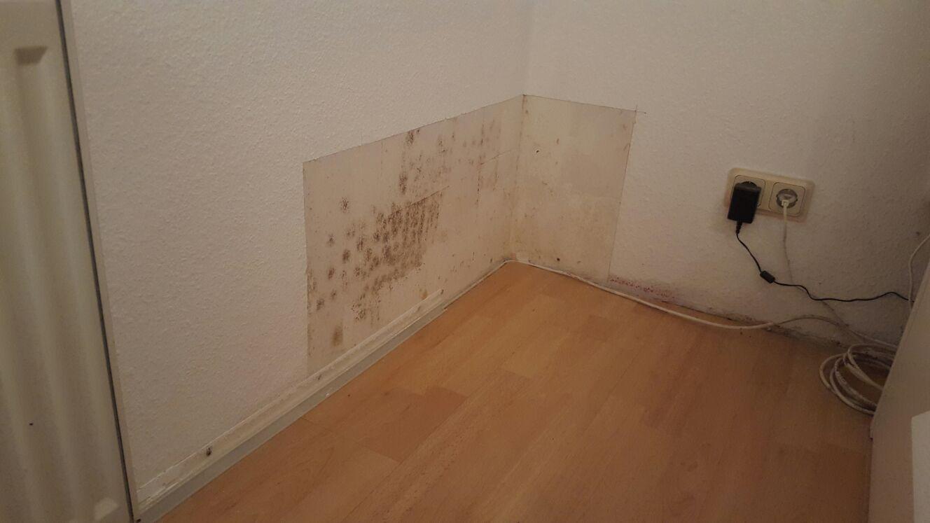 ursachen von schimmel im schlafzimmer ardap fogger schlafzimmer stuhl bettw sche blau kariert. Black Bedroom Furniture Sets. Home Design Ideas